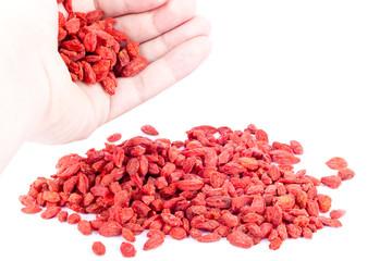 Goji berries in a hand