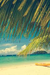 coconut tree with beach in borneo, manukan island , retro effect