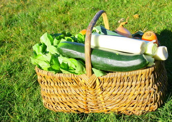 panier de légumes du potager