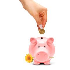Sparschwein mit Blume