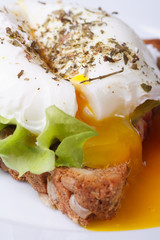 Eggs Benedict with bread on a plate close up vertical