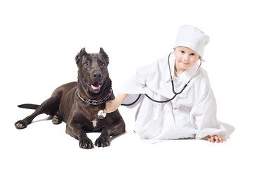 Small vet listens to a stethoscope dog