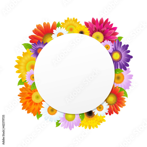 Colorful Gerbers Flower Banner