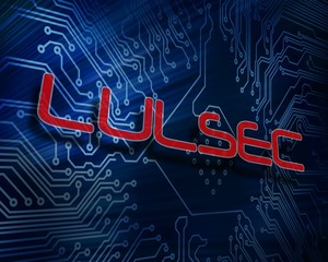 Lulsec against digital circuit board