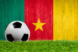 Soccer ball on grass with Cameroon flag background