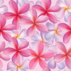 Seamless pattern plumeria