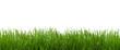 Leinwandbild Motiv Gras Textur