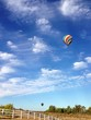 canvas print picture - Beautiful hot air balloons in the sky over the countryside.