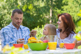 Family eating together outdoors at summer park or backyard