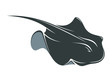 Swimming manta ray