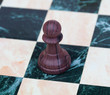 The pawn. Wooden chess piece