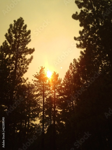 Sun shining through smoky skies during a forest fire.