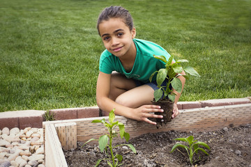 Little Girl Planting a new Plant