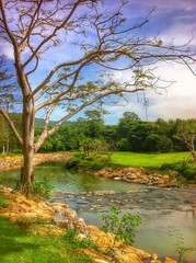 SKY TREE WATER
