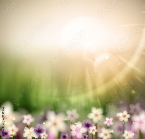 Abstract natural background with flowers