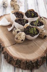 Easter egg shell decoration