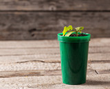 Young plant in pot on wooden background
