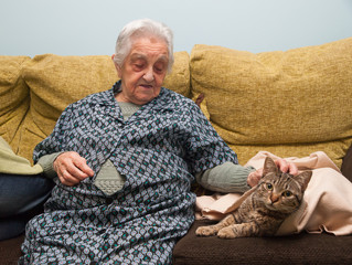 Elderly woman stroking her cat