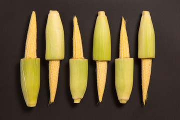 Studio shot of baby corn
