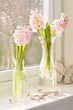 Vases Of Hyacinths