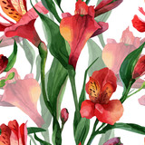 Floral pattern. Vector seamless background. Red alstroemeria
