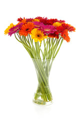 Colorful bouquet of Gerber flowers