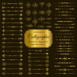 Vector set of calligraphic elements for design in gold
