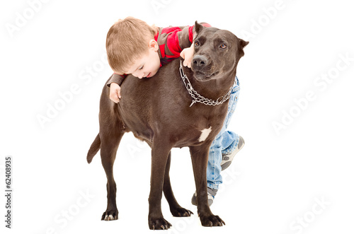 Little cute boy playing with the dog
