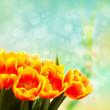 Tulpen vor Lichterhintergrund