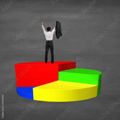 Man cheering on top of 3d pie chart