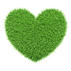 Green heart made of grass isolated on white