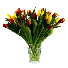 Vase with tulips isolated on a white background