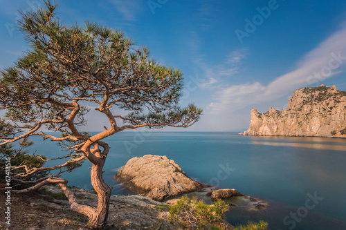"Rocky of ""Novyi Svet"" recreation area. Crimea, Ukraine"