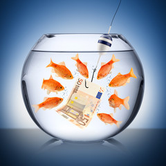 fish teaser concept