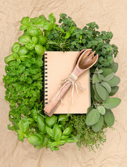 recipe book with variety fresh herbs and decoration