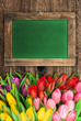 blackboard with colorful tulip flowers