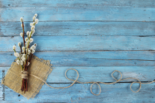 pussy willow twigs on wood background