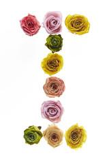 Rose font I