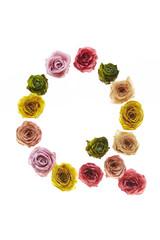 Rose font Q