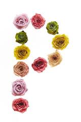 Rose font P