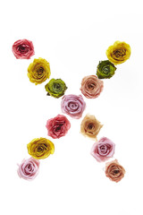Rose font X