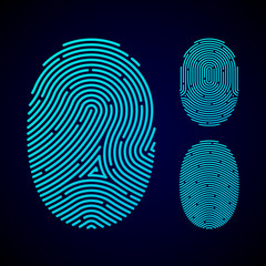 Types of fingerprint patterns - arch, loop and whorl