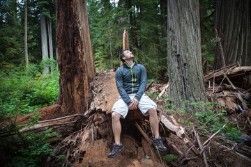 Hiker in Redwoods