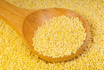 Wooden spoon with millet is on a  millet background