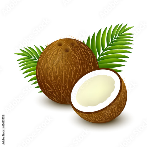 Coconut with palm leaves on white background