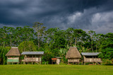 Village in Yasuni national park , Ecuador