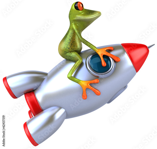 Frog and rocket