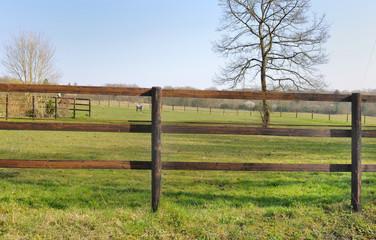clôture bois centre équestre