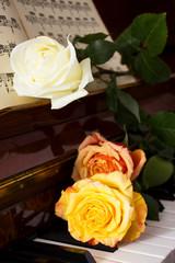 Розы на клавишах пианино