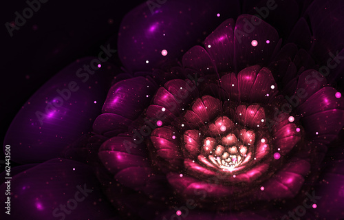 violet abstract flower
